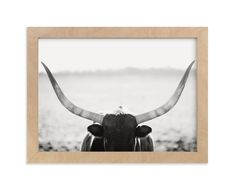 """""""Staredown"""" - Art Print by Amy Carroll in beautiful frame options and a variety of sizes."""