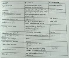 zöldségtársitások2 Allium