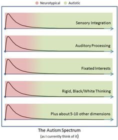 The autism spectrum as Matt currently thinks of it.