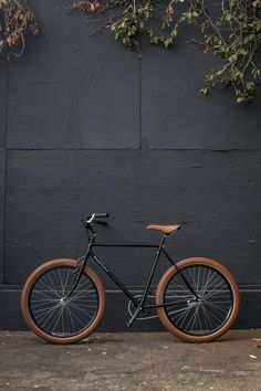 Ecolo Bike