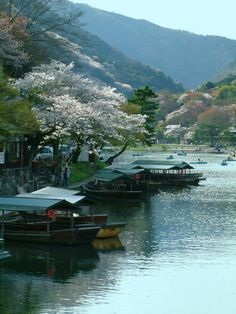 Japon Arashiyama in Kyoto, Japan Places To Travel, Places To See, Travel Destinations, Places Around The World, Around The Worlds, Foto Nature, Spring Scenery, Beautiful Places, Beautiful Pictures