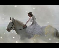 Лошади (Horses) - 100 потрясающих фотографий (часть 2). Комментарии : LiveInternet - Российский Сервис Онлайн-Дневников