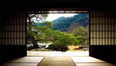 Peace zen