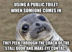 11 Awkward Seal Memes That Everybody Can Relate To