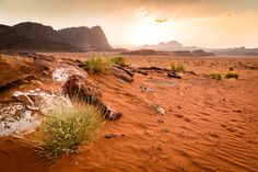 Wadi Rum at the Sunset by Daniele Pezzoni on 500px