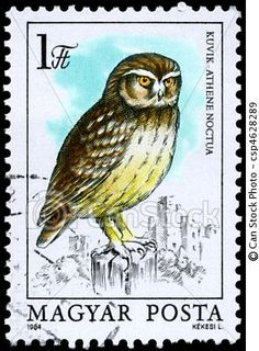 Little Owl stamp - Hungary Sell Stamps, Postage Stamp Art, Stamp Catalogue, Little Owl, Owl Art, Bird Art, Vintage Stamps, Stamp Collecting, Birds