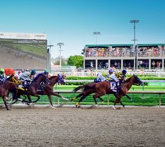 12 Things You Didn't Know About The Kentucky Derby || Thrillist || The youngest winning jockey was just 15...