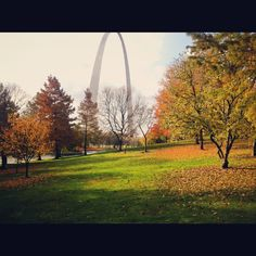 Beautiful, warm Fall day in St. Louis!