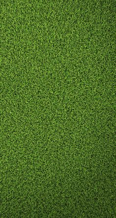 67 Ideas For Grass Wallpaper Iphone Nature Taps Office Wallpaper, Black Phone Wallpaper, Flower Phone Wallpaper, Graphic Wallpaper, Green Wallpaper, Cellphone Wallpaper, Cool Wallpaper, Mobile Wallpaper, Wallpaper Backgrounds