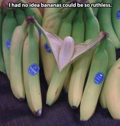 Funny pictures about Ruthless bananas. Oh, and cool pics about Ruthless bananas. Also, Ruthless bananas. Banana Funny, Funny Images, Funny Pictures, Good Humor, I Love To Laugh, Funny Moments, Funny Things, Funny Stuff, Jokes