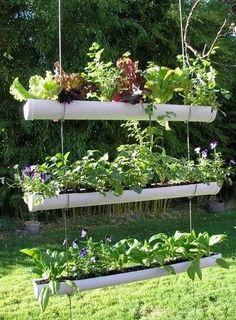 herb garden on post ideas | Hanging Gutter Herb Garden by GypsyLuLu's schemes