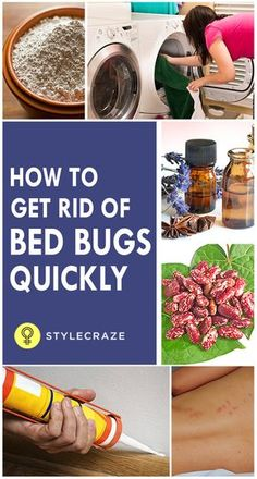 Here are some simple and natural methods you can use to get rid of these annoying pests in your home
