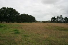 A great opportunity exists here for you to grab 14 Acres more or less of flat landon Fordyce Road in Parakai just a 5 minute drive from Helensville .  This excellent property offers a flat building site. Position your house where you want with no building covenant's you could also re locate a house onto this property. Maybe you would prefer to use the land as a market garden or to keep a couple horses given it's not far from Woodhill Sands. Heck you could even have a small flock of sheep.