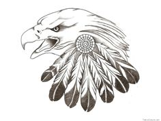 Free Designs  Feather Of Eagle Tattoo Wallpaper picture 970