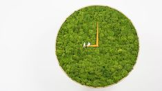 I Made A Moss Clock Using 2kg Of Moss | Bored Panda