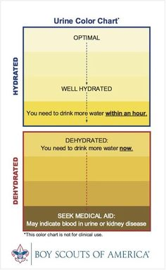 This chart borrowed from the Boy Scouts is very helpful in knowing if you're fully hydrated. It's easy - your urine should be the color of light lemonade. Dehydration can cause many unpleasant things - dry mouth, headaches, slow metabolism, water retention (yes water retention), kidney infections....I could go on. So make water a habit! An easy way to cure so many health issues!