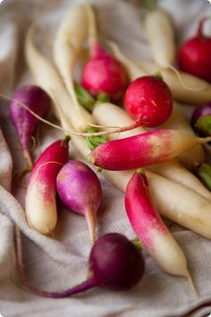 Radishes photo by Penny De Los Santos Root Vegetables, Fresh Fruits And Vegetables, Fruit And Veg, French Breakfast Radish, Raw Food Recipes, Healthy Recipes, Food Obsession, Delicious Fruit, Edible Garden