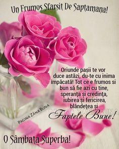 Vegetables, Rose, Flowers, Plants, God Loves You, I Love, Bible Verses, Words, Pink