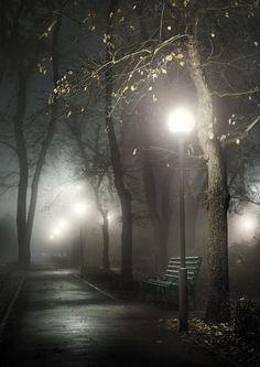a misty autumn night - photo by Igor Logvin