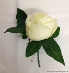 Cream rose Buttonhole Wedding Flowers Liverpool, Merseyside, Bridal Florist, Booker Flowers and Gifts, Booker Weddings Cream Wedding, Rose Wedding, Wedding Flowers, Wedding Day, Cream Flowers, Cream Roses, Inglewood Manor, Button Holes Wedding, Vera Wang Wedding