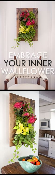 The Grovert Wall Planter in Walnut is a stunning piece of living art that will elevate your vertical space. Use any plants or recreate the look with caladium, holly fern, b(Wooden Step Indoor) Indoor Planters, Hanging Planters, Indoor Garden, Outdoor Gardens, Home And Garden, Air Plants, Garden Plants, Wooden Steps, Arte Floral