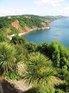 Torquay - England - YES! There ARE palm trees in England! Just down the road :-) Devon England, England Ireland, British Seaside, British Isles, Devon Beach, Exeter Devon, Devon And Cornwall, British Wildlife, Dartmoor