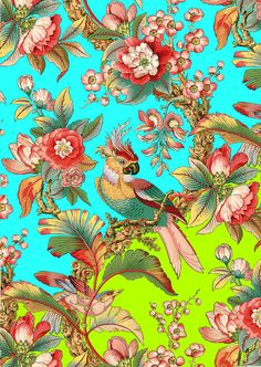 antique french chinoiserie tropical wallpapertropical bird