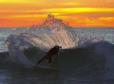 surfing is a great eye catching talent
