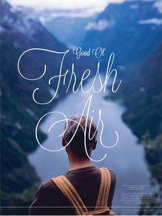 Good Ol' Fresh Air poster by Amanda Guarini, via Behance