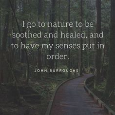nature quotes 59 Funny Inspirational Quotes Life Youre Going To Love 9 John Muir, Mother Nature Quotes, Beauty In Nature Quotes, Quotes About Nature, Walking Quotes, Nature Quotes Adventure, Quotes About Adventure, Adventure Quotes Outdoor, Funny Motivational Quotes