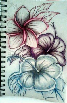 Love this one hawaiian flowers, hawaiian flower tattoos, hawaiian art, tatoos, fake Pretty Tattoos, Love Tattoos, Beautiful Tattoos, Black Tattoos, Body Art Tattoos, New Tattoos, Tatoos, Tropisches Tattoo, Piercing Tattoo