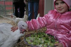 Love for animals is taught young ~ by Farm Sanctuary, via Flickr