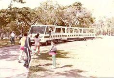 Caracas Parque del Este años 1980