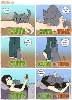 9 New Comics All Cat Owners Will Understand!