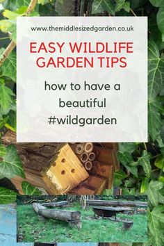 An easy and relaxed way of gardening - and it's sustainable and supports wildlife. #wildgarden #backyard #middlesizedgarden #gardening Easy Small Garden Ideas, Easy Garden, Outdoor Projects, Garden Projects, Small Gardens, Outdoor Gardens, Mansion Hotel, Low Maintenance Garden Design, Sensory Garden