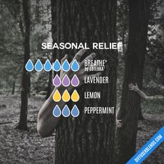 Seasonal Relief - Essential Oil Diffuser Blend