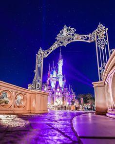 takuさんはInstagramを利用しています:「こんばんは! シンデレラ城と沢山の星✨ この日は寒かったけど この景色を見ている時間は 不思議と寒さもあまり感じませんでした ✴︎ 最後に撮った1枚が1番良かった! 一緒に天体観測してくれる人がいて良かった 1人だったら凍結してました🤣 ✴︎ ✴︎ ✴︎…」 Disney Time, Disney Magic, Disney Frozen, Disney Parks, Walt Disney World, Fimo Kawaii, Beautiful Web Design, Cute Cartoon Wallpapers, Phone Wallpapers
