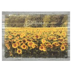 You Are My Sunshine Canvas Print by Jennifer Ditterich Designs