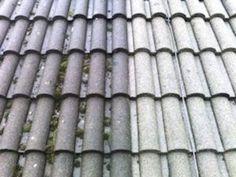 Kerry soft washing contractor Killorglin Killarney Tralee Dingle Kenmare Castleisland in Kerry Roof Cleaning ROOF CLEANING SERVICES IN KERRY BY PAUDI CLIFFORD