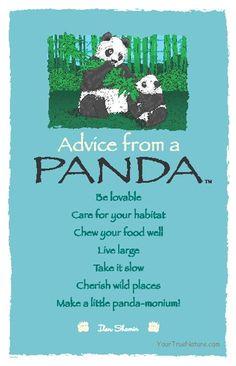 Spirit animal totem advice from a panda. Spirit Animal Totem, Animal Spirit Guides, Animal Totems, Spiritual Animal, Panda Love, Panda Panda, Panda Bears, Animal Medicine, Pomes