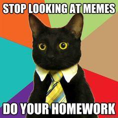 do your homework | ... mode' homework funny , homework meme funny , summer homework funny