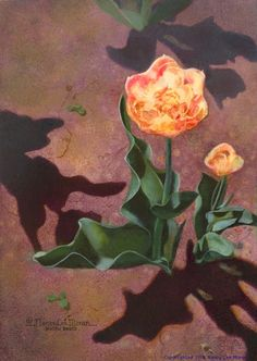 """""""Shadow Dance"""" is art by Nancy Lee Moran.  Buy the Original Oil Painting for $250.00 (18 x 12.5 cm centimeters, 5x7 inches on board). Painted with 100% lightfast oil pigments by Daniel Smith (USA) and Winsor & Newton (England), varnished by the artist #tulips #garden #flowers #oilpainting #art #shadows"""