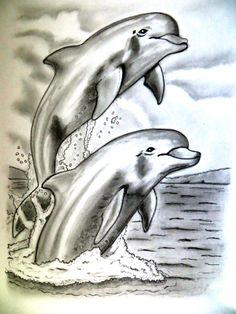 #pencil #drawing #art #dolphin
