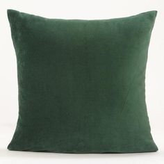 One of my favorite discoveries at WorldMarket.com: Green Eden Velvet Throw Pillow