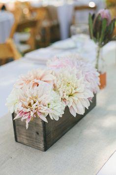 ¿Cuál es tu flor favorita? desde hoy mi nº 1 es la Dahlia