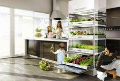 Nano Garden, um projeto da Samsung de estufa doméstica para cozinhas