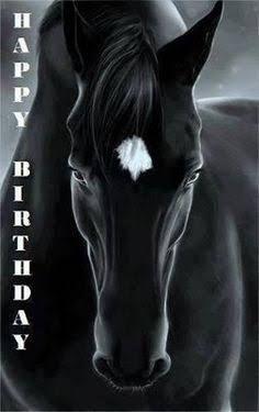 Image result for happy birthday with horse images