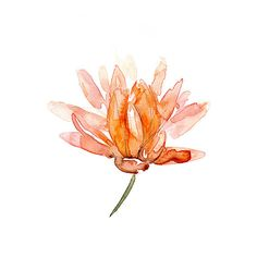 Hey, I found this really awesome Etsy listing at https://www.etsy.com/listing/196122958/lotus-watercolor-painting-lotus-zen-art