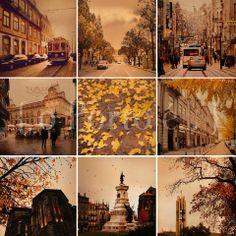 o Porto é... outono na cidade