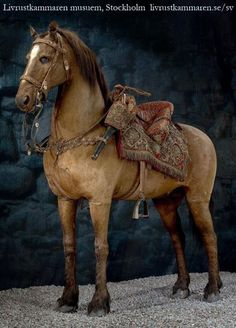 The oldest preserved horse: This is Streiff, the beloved battle horse of Gustav II